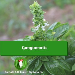 Trailer 407: Gangiamatic