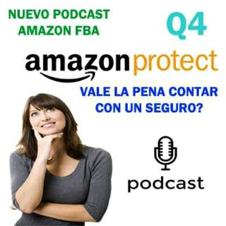 Q4 Amazon FBA _ Vale La Pena Contar Con Un Seguro en Amazon?