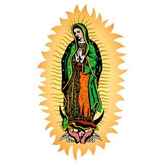 11 de diciembre – Oración para recibir la ayuda de la Virgen de Guadalupe