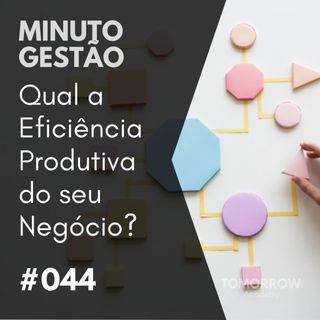 #044 - Qual a Eficiência Produtiva do seu Negócio?
