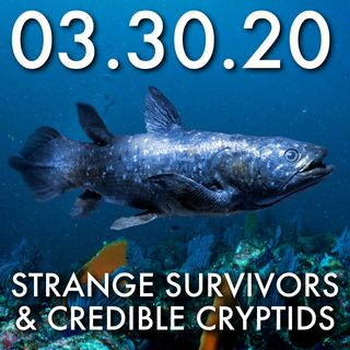 03.30.20: Strange Survivors and Credible Cryptids