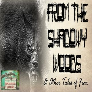 From the Shadowy Woods and Other Tales of Terror | Podcast E66