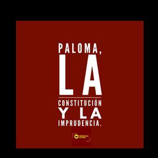 Paloma, La constitución y la imprudencia