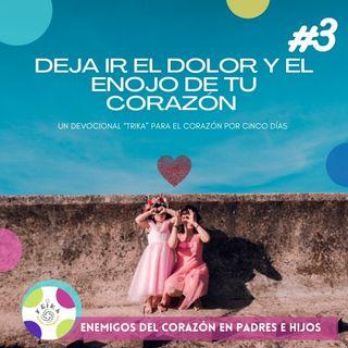 "DEVOCIONAL #3 "" DEJA IR LA IRA Y EL ENOJO"" El podcast de Elsa Lorena"
