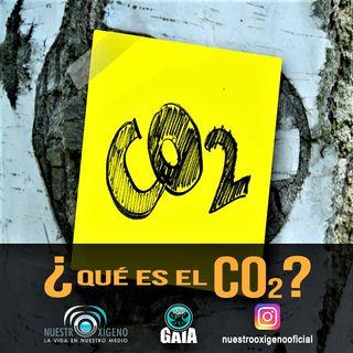 NUESTRO OXÍGENO Que es el CO2