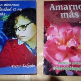 Se Publicará La Novela El Renacer Del Amor