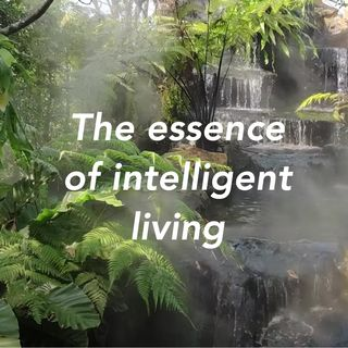 The essence of intelligent living