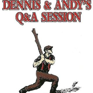 Dennis and Andy's  Q&A