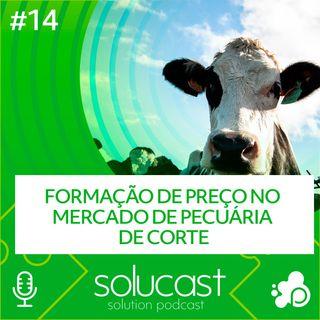 #14 - Formação de preço no mercado de pecuária de corte