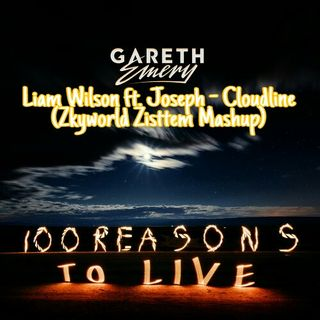Gareth Emery & Liam Wilson feat. Joseph - Cloudline (Zkyworld Zisttem Mashup)