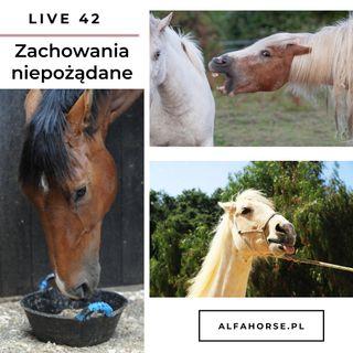 Live 42: Zachowania niepożądane koni w czasie obsługi i treningu