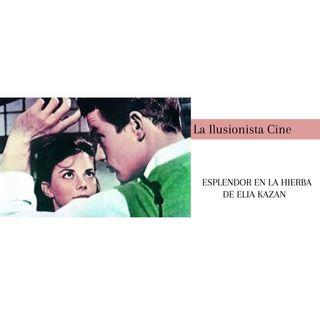 La Ilusionista Cine: Esplendor en la hierba de Elia Kazan