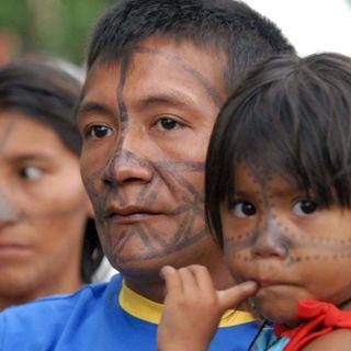 Al via il Sinodo sull'Amazzonia: Quali azioni ci salveranno