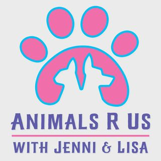 Episode 12: Humane Rescue Alliance and Animal Tales