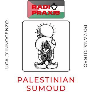 Eid milad majid ! Il Natale in Palestina: Betlemme, Nazareth, Gerusalemme.