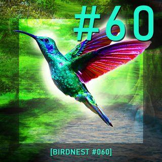 BIRDNEST #060   SsOunday in Deep Flight   Podcast by The Lahar