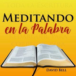 MelP_632-Santiago_3_14