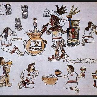 Sobre Las Plantas Medicinales En Mesoamerica