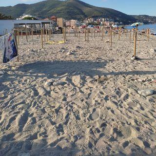 #Torino Spiagge pubbliche durante il covid & animali preferiti