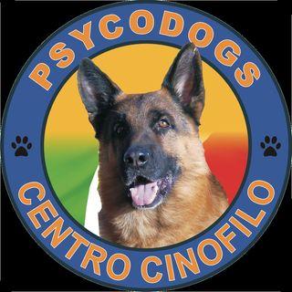 1 puntata del Podcast di PsycoDog