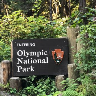 Exploring Olympic National Park - Debbie Stone on Big Blend Radio