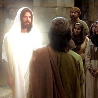 Case For Jesus