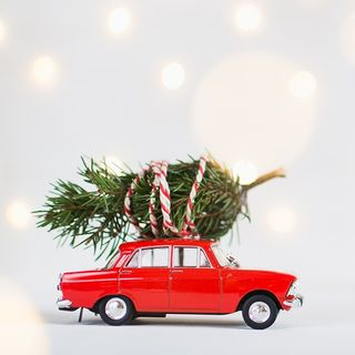 AAA: 44 Percent Of Drivers Don't Secure Christmas Trees Properly