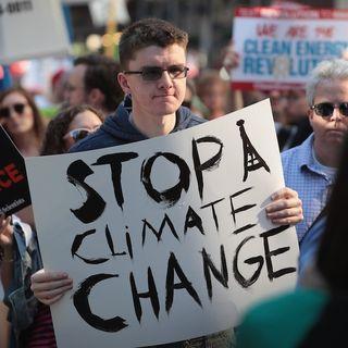 11mila scienziati dichiarano la Terra in stato d'emergenza