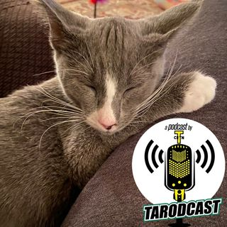 Episode #048 - Cat Daddy