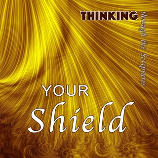 Your Shield (TTTS #4)