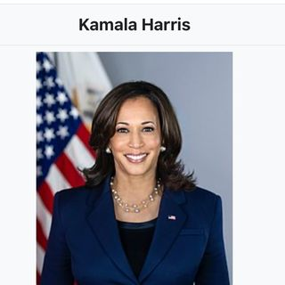 Kamala Harris:America is not racist country.