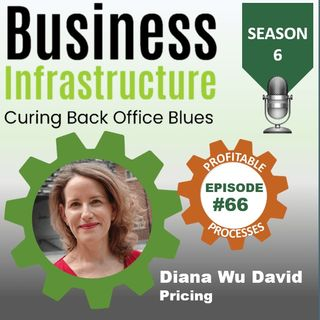 Episode 66: Diana Wu David s Pricing Process