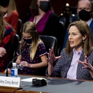 Amy Coney, The USA Constitution, working from home