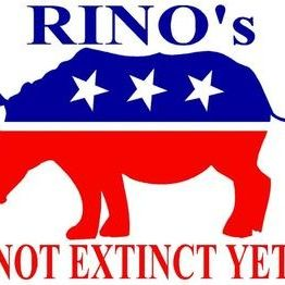 the rino reality