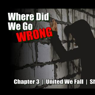 United We Fall - Chapter 3 - Where Did We Go Wrong