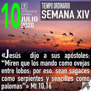 Homilía 10 Julio 2020 Por una santa sagacidad y astucia divina
