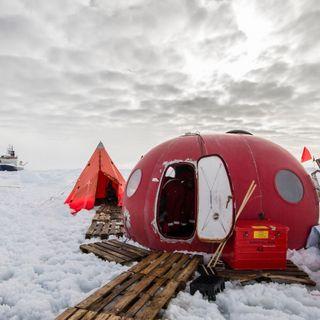 L'Antartide non è più covid free