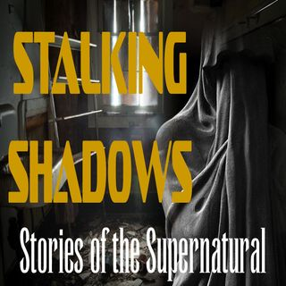 Stalking Shadows | Interview with Debi Chestnut | Podcast