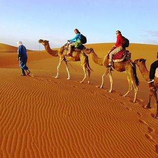 Book Oman Trips and Holiday Packages At Best Price