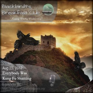 Everybody Was Kung Fu Shaming - Blackbird9 Podcast