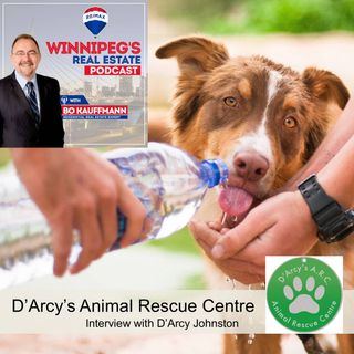 D'Arcy's Animal Rescue Centre - Interview-History-Stories