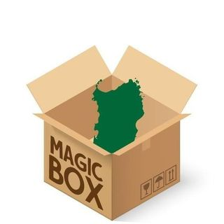 "INTERVISTA DIEGO CAOCCI - ""MAGIC BOX SARDEGNA"""