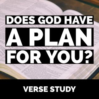 Does God have a plan for you? | Proverbs 20:24 Verse Study