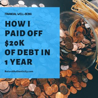 How I Paid off  $20,000 of Debt in 1 year