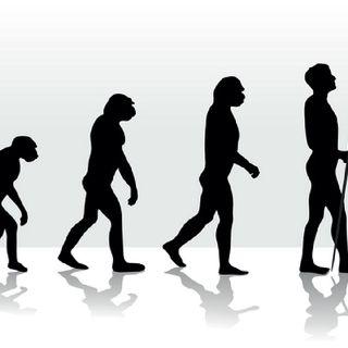 TRBR #043 - A evolução tecnológica vs a evolução humana.