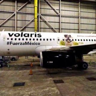 Avión con imagen de Frida