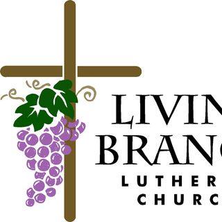 Sermon for Trinity 6 2021