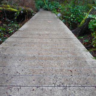 The Fake Bridges O&B