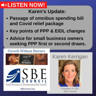 Congress passes omnibus spending bill, Covid relief package, 1st & 2nd PPP draws, EIDL updates.