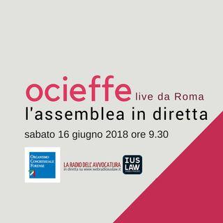 Assemblea OCIEFFE 16 Giugno 2018 - Sessione Mattutina